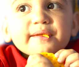 Is Autism Linked To Food Allergies >> Autism Pdd Nos Asperger S Fact Sheets Allergies Food